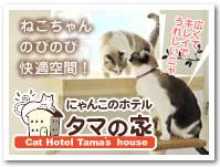 ネコちゃん専用ペットホテル タマの家