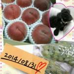 2014-08-31_19.00.53.jpg